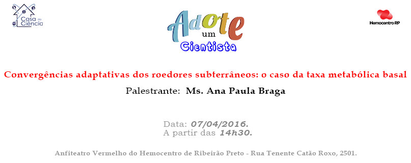 Ms Ana Paula Braga