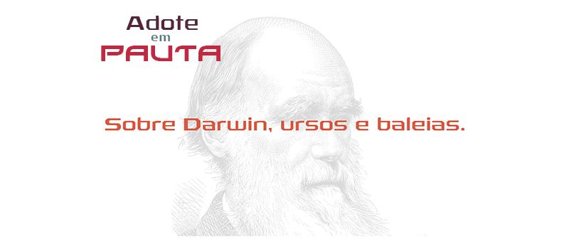 Adote em Pauta_ Darwin